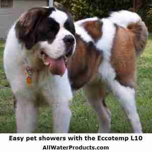 Easy pet showers with the Eccotemp L10. AllWaterProducts.com